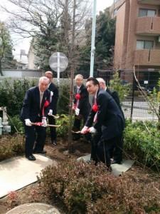 ふるさと千川  染井吉野 植樹式(3月15日)